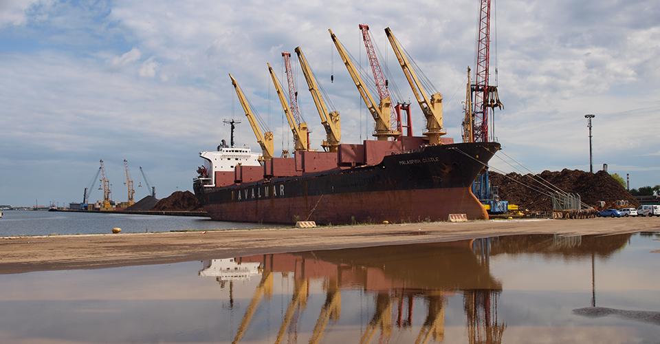 assistenza doganale porto venezia marghera